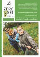 Zeroseiup 1/2021